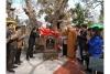 Công nhận 2 cây di sản tại xã Đoàn Lập (Tiên Lãng)