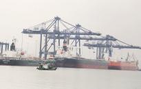 CICT Cái Lân phấn đấu gần 60.000 Teus Container thông qua năm 2018