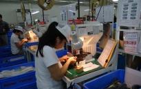 Thu hồi dự án FDI vi phạm: Tăng cường quản lý hoạt động đầu tư nước ngoài