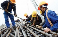 Bảo hiểm xã hội thành phố thanh, kiểm tra 147 đơn vị sử dụng lao động