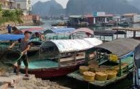 Tháng 11 hoàn thành đồ án quy hoạch phân khu tỷ lệ 1/2000 Trung tâm nghề cá lớn Hải Phòng