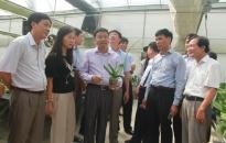 12 doanh nghiệp khảo sát đầu tư sản xuất nông nghiệp công nghệ cao