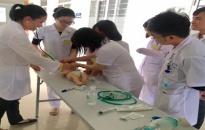 BV Trẻ em Hải Phòng tập huấn cấp cứu nhi khoa cơ bản
