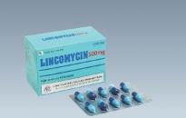 Cảnh báo thuốc Lincomycin 500mg giả