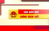 * Ngày 4-7, UBND TP Hải Phòng ban hành Công văn số 4106 về việc triển khai thực hiện Chỉ thị số 14/CT-TTg ngày 25-5-2018 của Thủ tướng Chính phủ về việc nâng cao năng lực phòng, chống phần mềm độc hại…