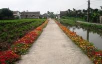 Huyện An Dương:  Xây dựng 8 thôn NTM kiểu mẫu