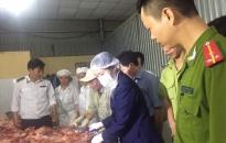 Hải Phòng chủ động ngăn chặn dịch tả lợn Châu Phi xâm nhiễm