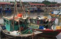 Xử phạt 6 trường hợp vi phạm khai thác thủy sản