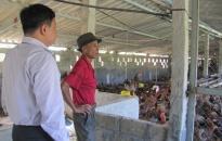 Tìm hiểu nhu cầu vay vốn mở rộng sản xuất người dân huyện An Dương