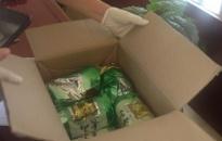 Lực lượng Cảnh sát ĐTTP ma túy - CATP khám phá thành công 97 vụ