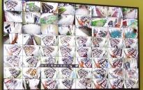 Về việc lắp đặt camera tại Trường Tiểu học Quán Toan (quận Hồng Bàng)