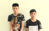 Công an huyện Thái Thụy, tỉnh Thái Bình: Bắt giữ 2 đối tượng trộm cắp tài sản