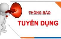 Công ty TNHH Taxi Hải Phòng thông báo tuyển dụng