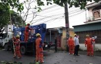 Công ty Điện lực Hải Phòng khắc phục sự cố sau bão số 3