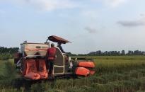 Tỷ lệ lao động nông thôn qua đào tạo đạt 65%