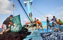 Dư nợ cho vay phát triển thủy sản theo Nghị định 67 đạt 652,45 tỷ đồng