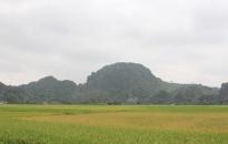 Công tác thu, chi ngân sách nhà nước trên địa bàn huyện An Lão:  Chuẩn bị nền tảng vững chắc cho những mục tiêu cao hơn