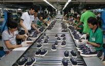Xuất nhập khẩu của Việt Nam lập kỷ lục, vượt mốc 500 tỷ USD