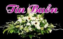 TIN BUN