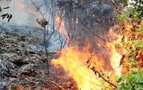 Kịp thời dập tắt 3 vụ cháy