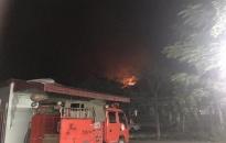 Hơn 450 người dập tắt đám cháy tại núi Sơn Đào