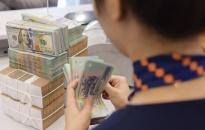 468,6 tỷ đồng dư nợ cho vay phát triển thủy sản theo Nghị định 67
