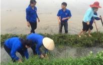 Huyện đoàn Tiên Lãng: Triển khai hiệu quả nhiều công trình, phần việc thanh niên