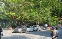 Quận Ngô Quyền triển khai cấm đậu, đỗ xe khu vực trung tâm