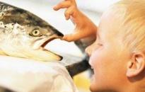 Ăn cá giảm nguy cơ mắc bệnh ngoài da