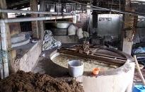 Hầu hết các cơ sở sản xuất bia chưa xử lý nước thải