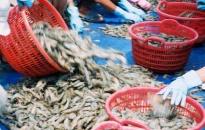 Khảo sát tình hình kinh tế - xã hội xã Vinh Quang