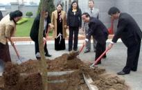 Lãnh đạo thành phố tham gia Tết trồng cây