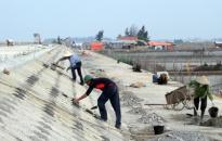 Huyện An Dương xử lý 8 vụ vi phạm đê điều