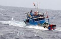 Cứu kịp thời 2 thuyền viên bị nạn trên biển Bạch Long Vĩ