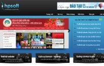 Công ty thiết kế website tại Hải Phòng