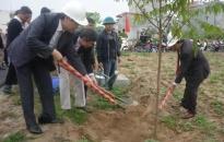 Phát động lễ trồng cây mùa xuân 2014