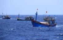 Tàu cá bị Trung Quốc đâm chìm được trục vớt