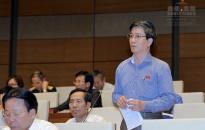 Đại biểu Hải Phòng tại diễn đàn Quốc hội: Luật Quy hoạch phải đáp ứng yêu cầu thực tế