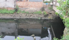 Ô nhiễm nước kênh Bắc Nam Hùng - Cần giải pháp khắc phục triệt để