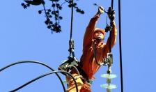 Huyện Tiên Lãng: 75 tỷ đồng đầu tư cải tạo lưới điện trung áp, lưới điện 10 KV