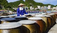 Chi cục Thủy sản: Khảo sát nguồn hàng cung ứng dịp Tết Nguyên đán