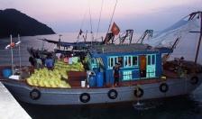 """Quảng Ninh """"nói không"""" với khai thác thủy hải sản tận diệt"""
