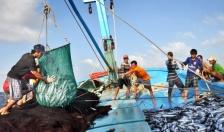 Gần 700 tỷ đồng cho vay phát triển thủy sản