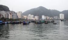 Kinh tế Cát Hải:  Khát vọng vươn ra biển lớn