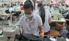 Huyện Tiên Lãng thu hút 187 doanh nghiệp, hợp tác xã