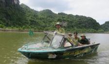Tăng cường bảo vệ, PCCC rừng