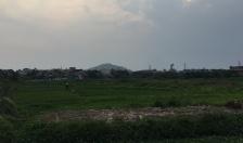 Quận Kiến An: Cấp 1.165 giấy Chứng nhận quyền sử dụng đất