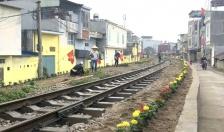 Quận Lê Chân: Trồng hàng nghìn cây hoa cảnh làm đẹp tuyến đường sắt