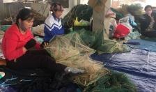 Quận Đồ Sơn: Tổng giá trị thủy sản ước đạt gần 130.000 triệu đồng