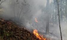 Huy động hơn 30 cán bộ tham gia dập lửa chữa cháy rừng